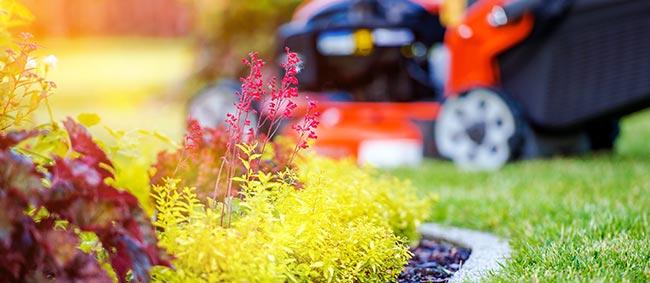 tuinwerken Wevelgem